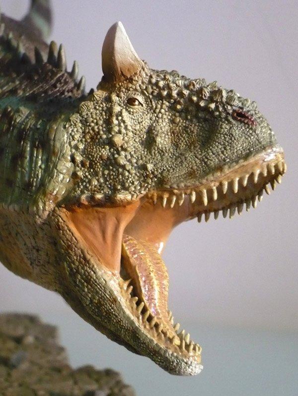 carnotaurussideshow02.jpg