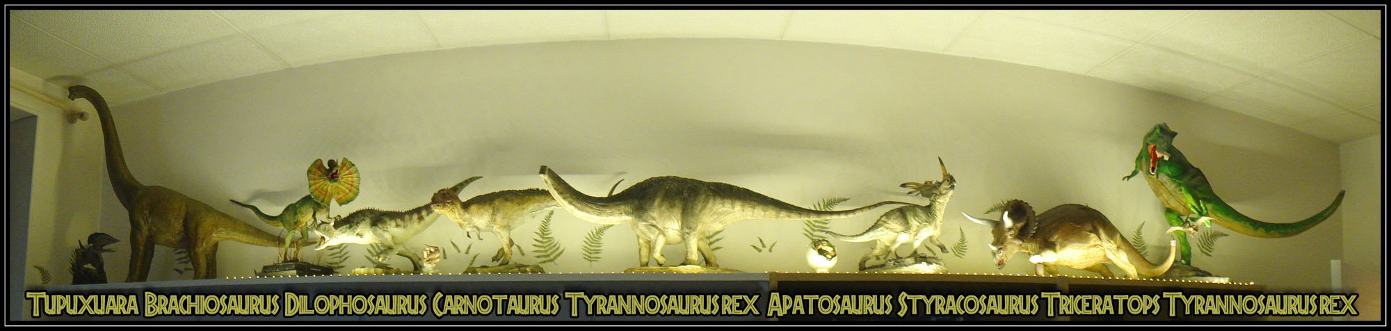 Dino_collection_shelve